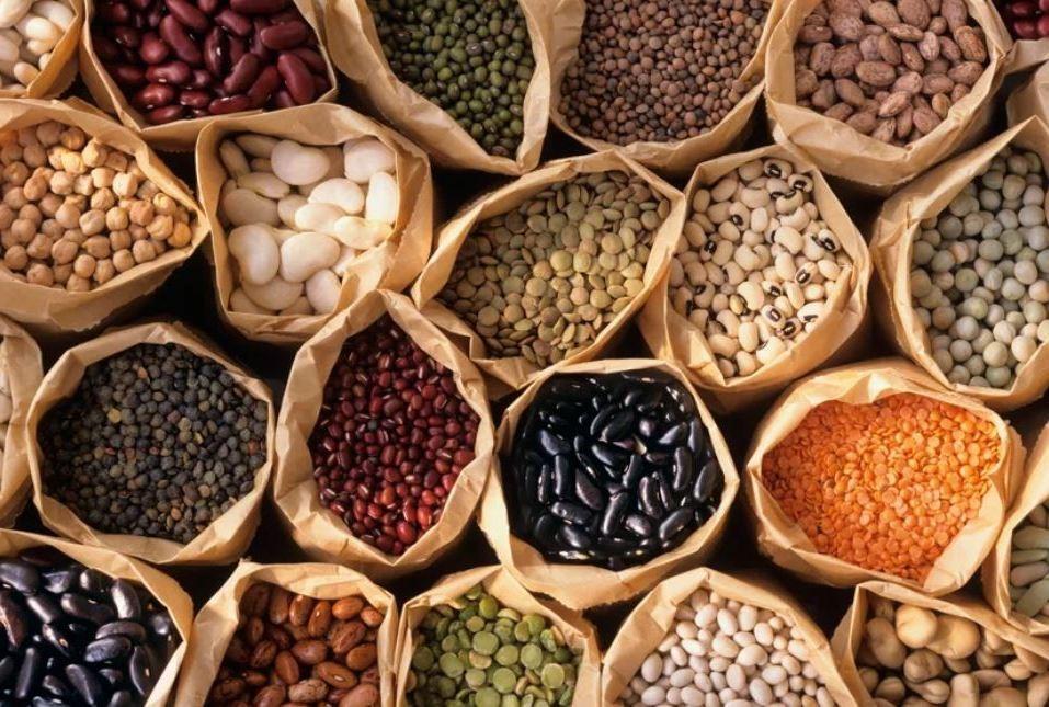 фасоль, бобы, соя, чечевица, люпин, чина, инга, арахис