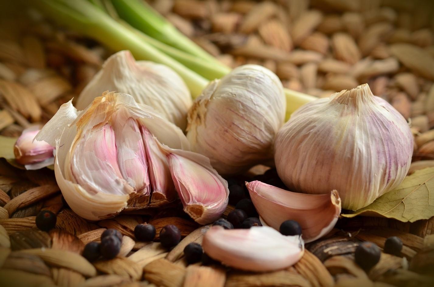 Правила выращивания озимого чеснока