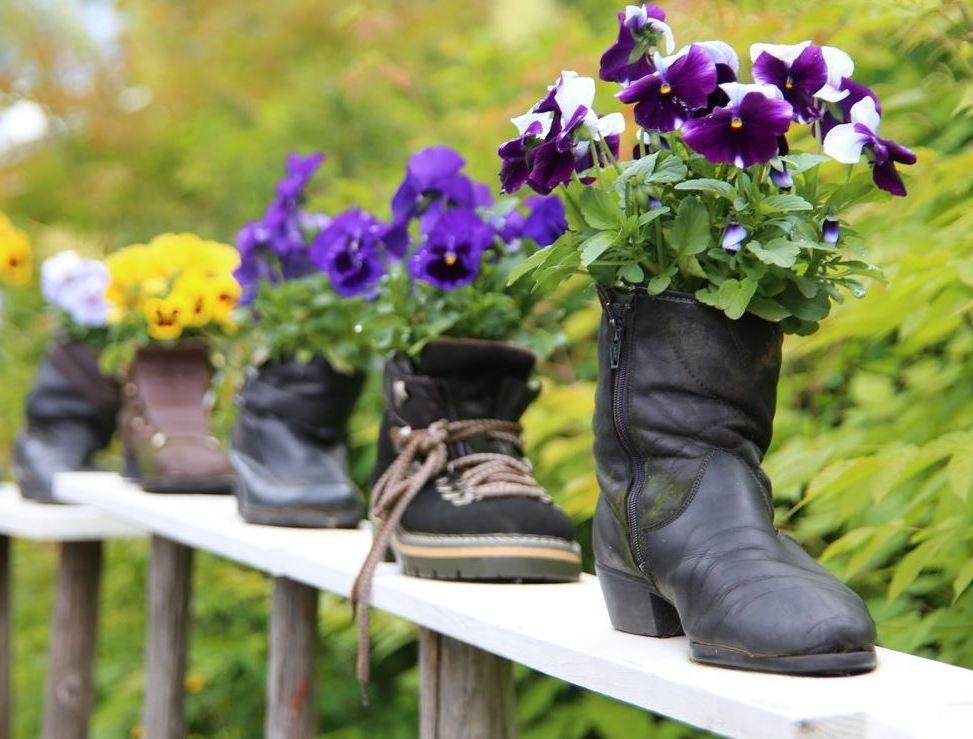 клумба Изношенная пара обуви