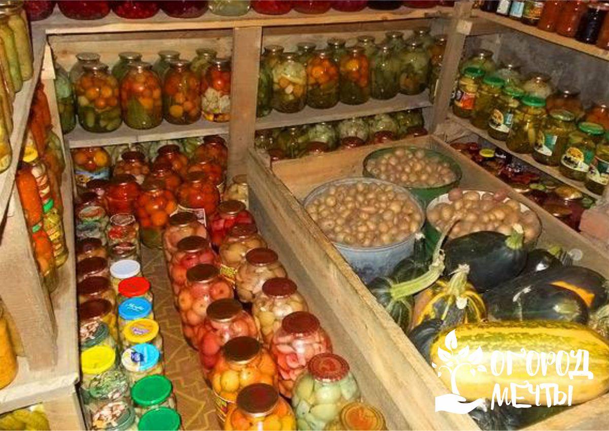 Как правильно хранить зимой собранный урожай