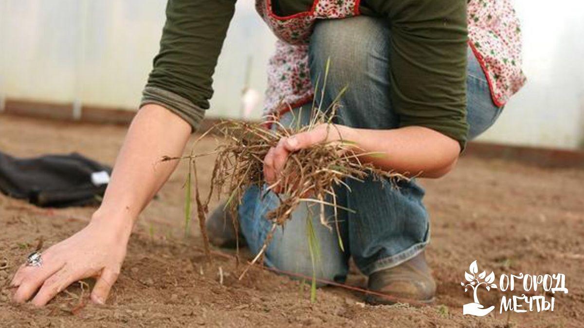 избавление почвы от всякой растительности