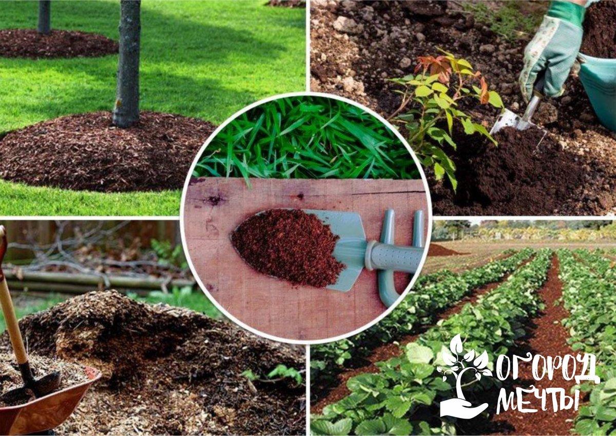 Как сделать компост для огорода или сада
