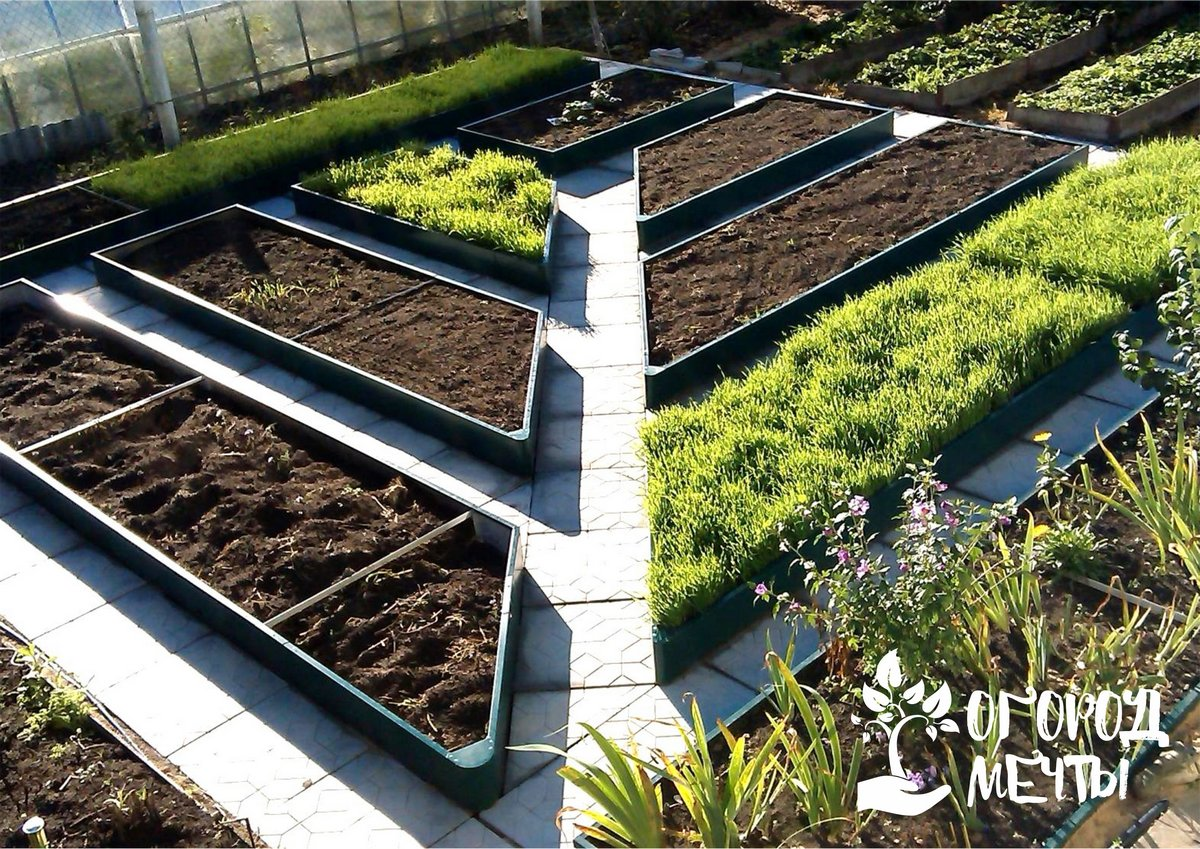 • Украшают огород