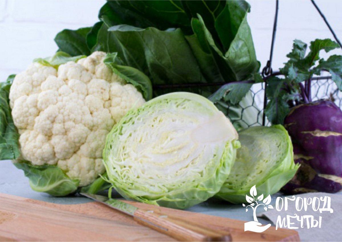 Также можно выложить овощи пирамидой