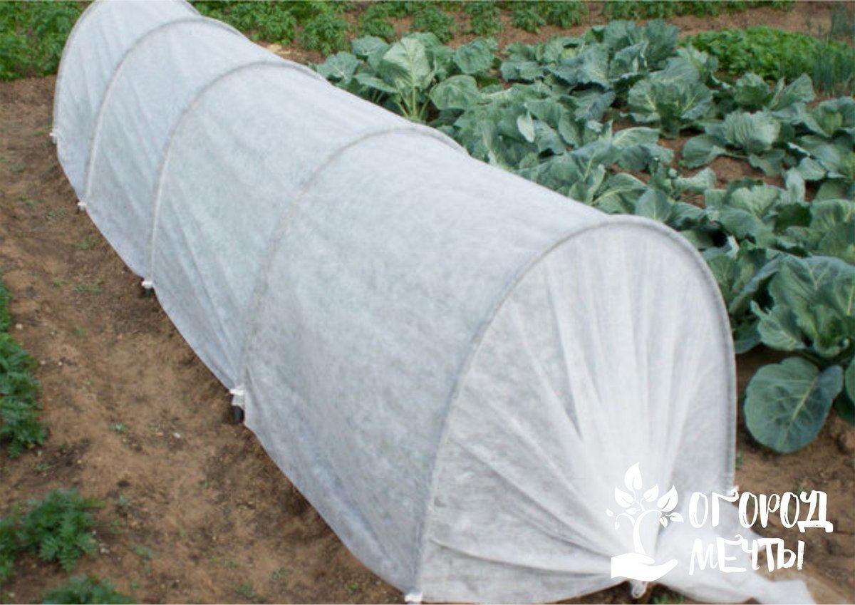 Как подготовить почву