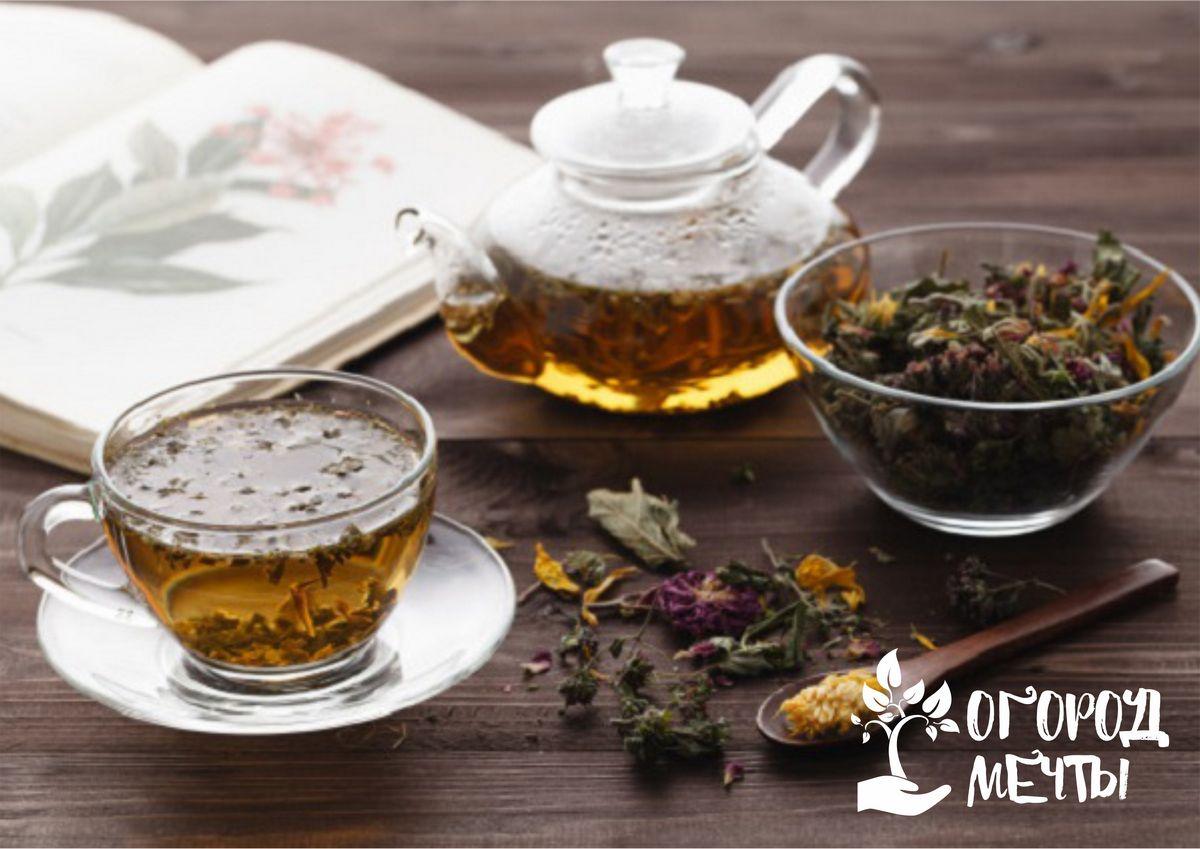 Как правильно приготовить травяной чай