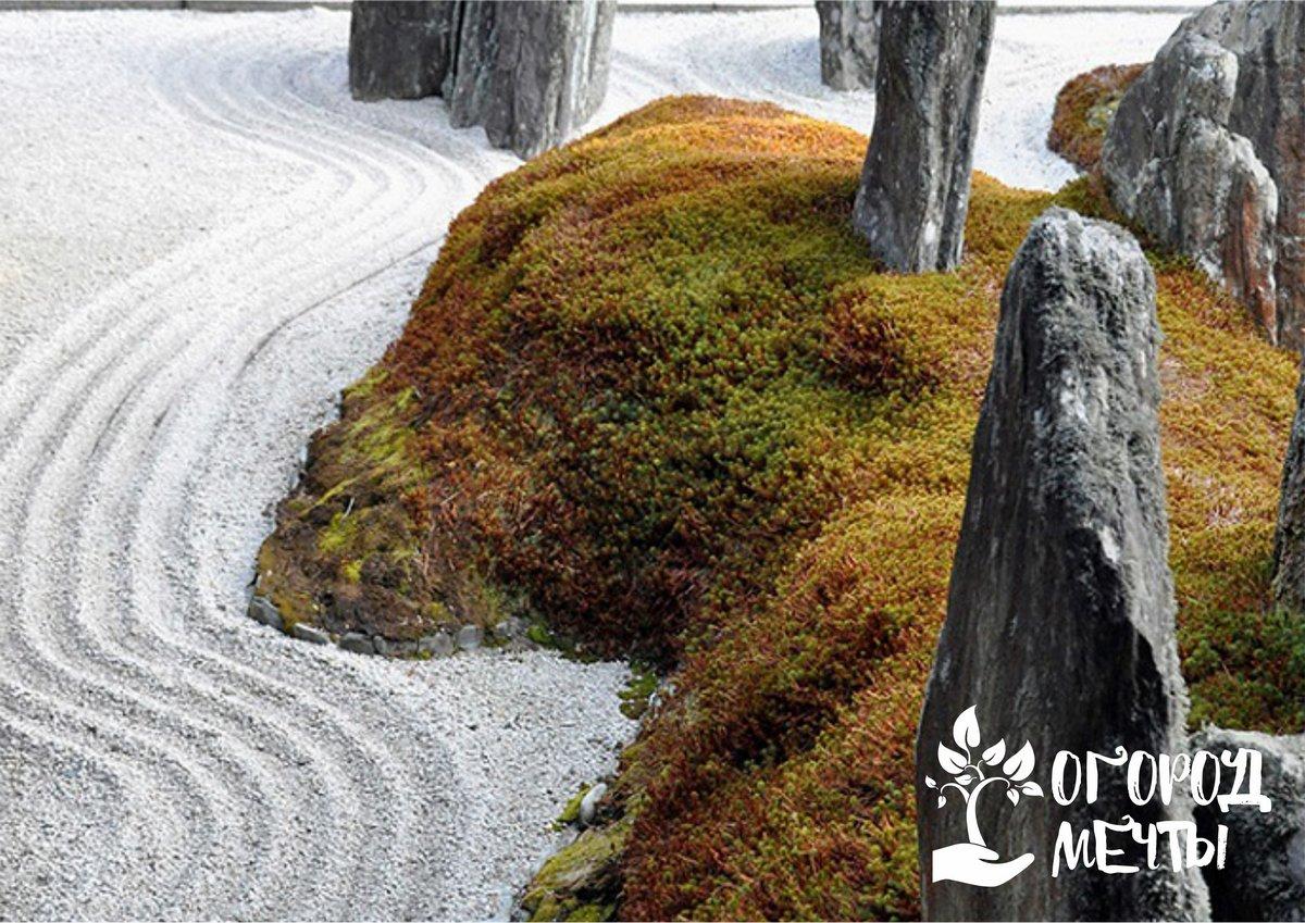 Как подобрать валуны и камни для каменного сада