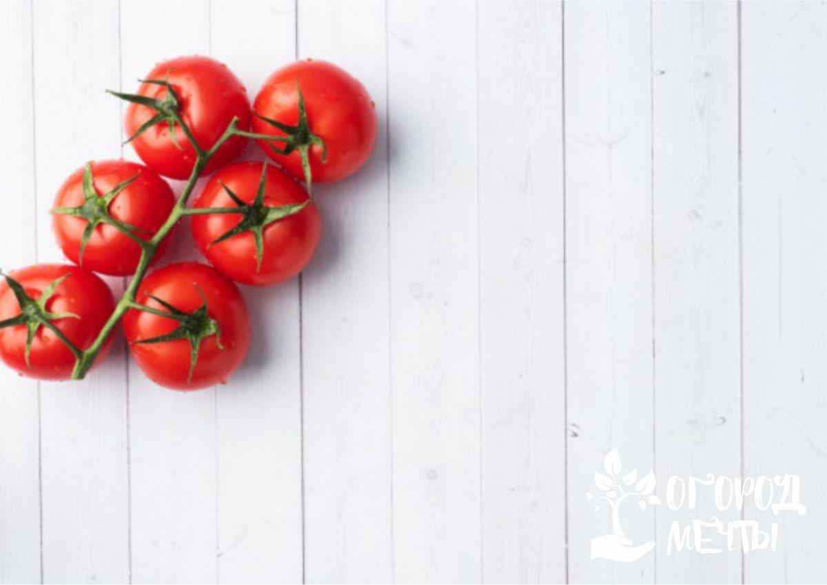 Топ-6 сортов сочных сахарных томатов