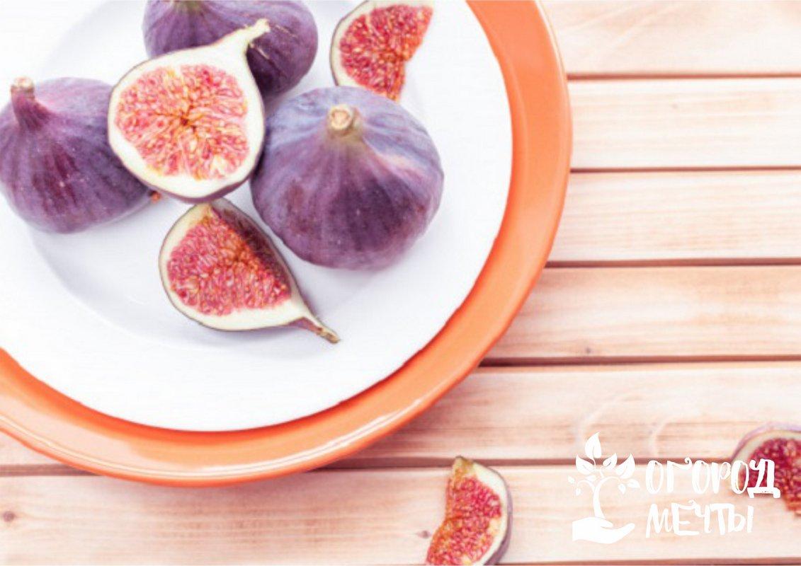 Уборка плодов и хранение