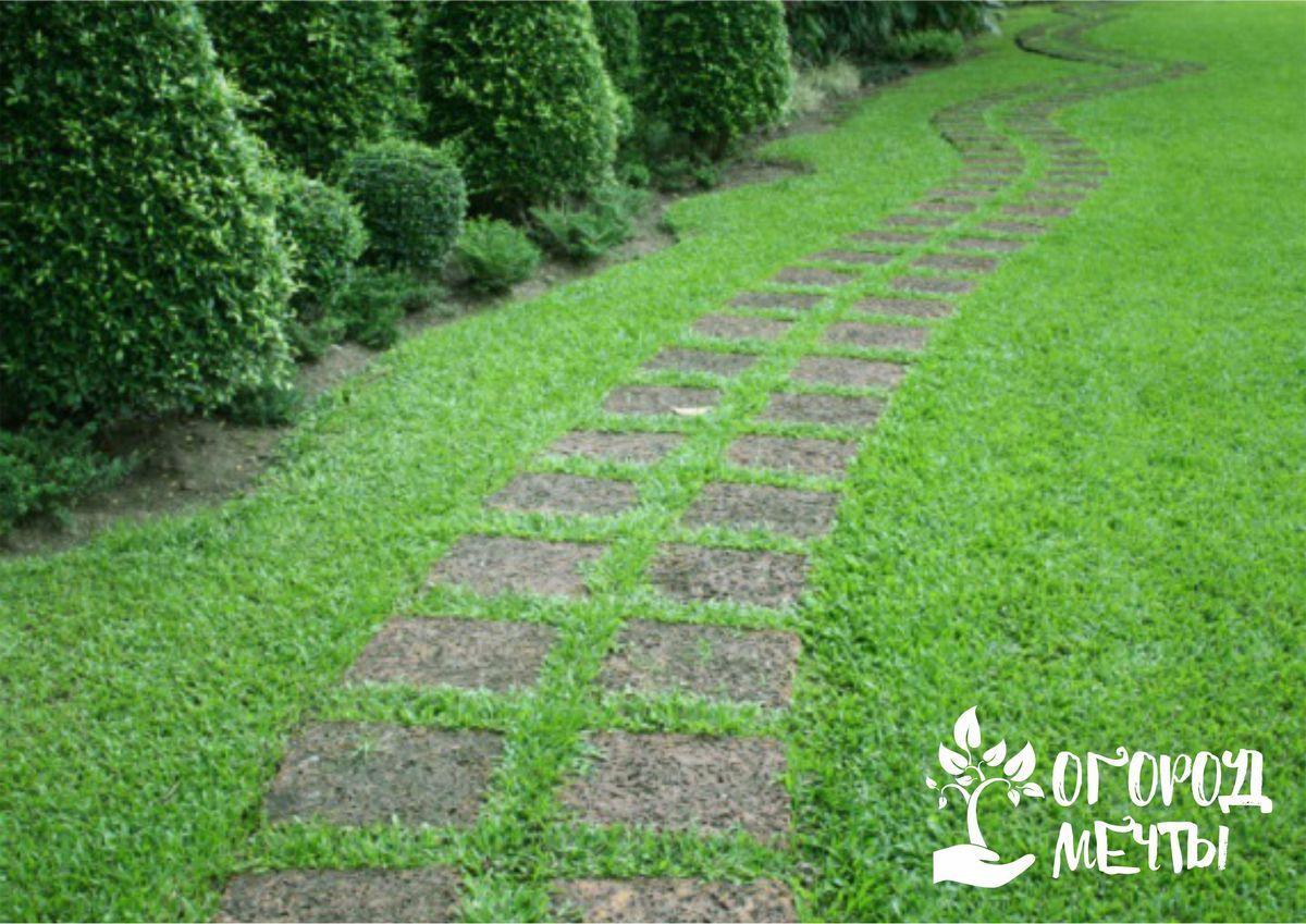 Как убрать сорняки на садовых дорожках семь эффективных методов