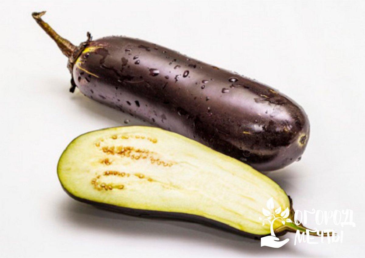 Для выращивания в тепличных условиях нужно подбирать гибридные неприхотливые сорта баклажанов