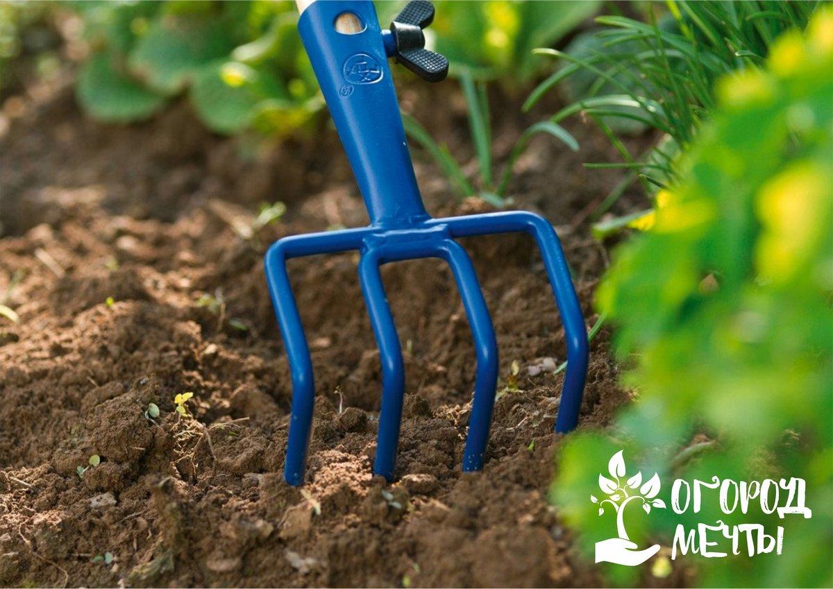 Восемь эффективных приспособлений для устранения сорняков на участке