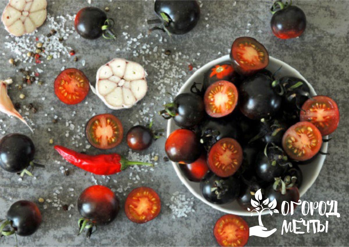 Лучшие сортовые разновидности черноплодных помидоров
