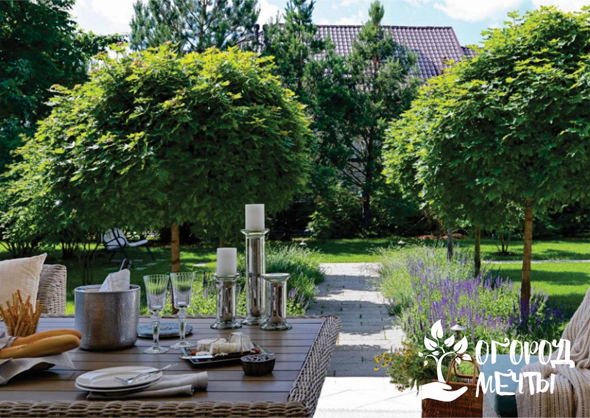 Очистка и восстановление садовой мебели из дерева