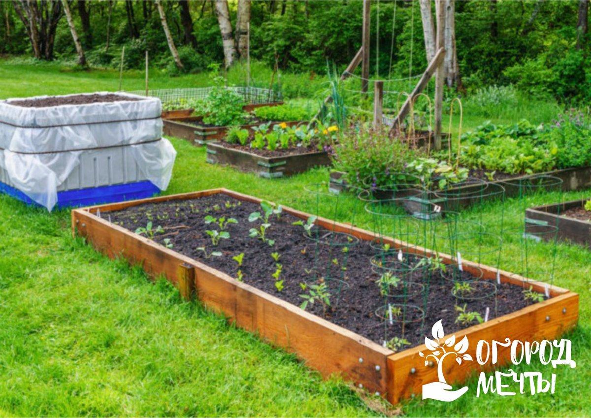 Ограждения для садовых и огородных грядок: функциональность и назначение