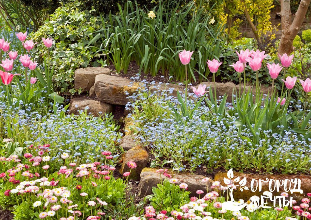 Основные признаки сада в коттеджном стиле