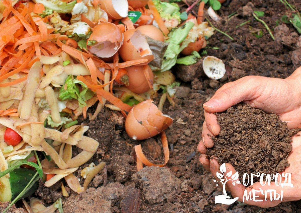 Питательное и бесплатное удобрение для дачи своими руками! Нюансы компостирования различных растительных остатков на участке