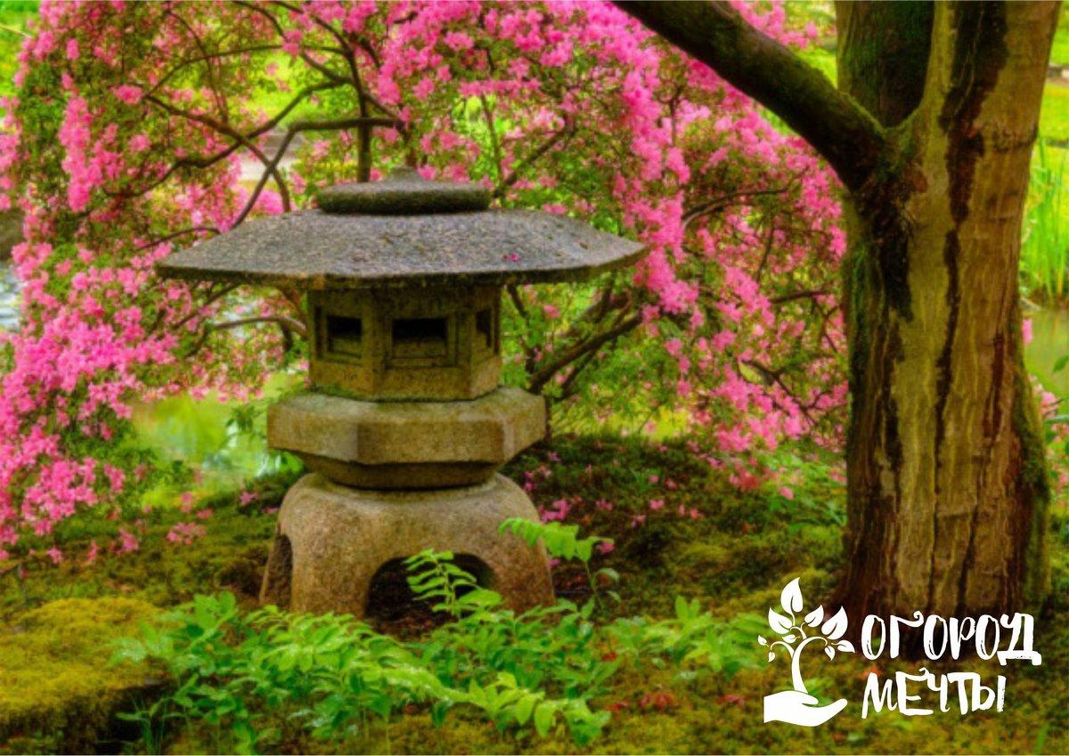 o Фонари - без обычных фонарей сад в японском стиле немыслим