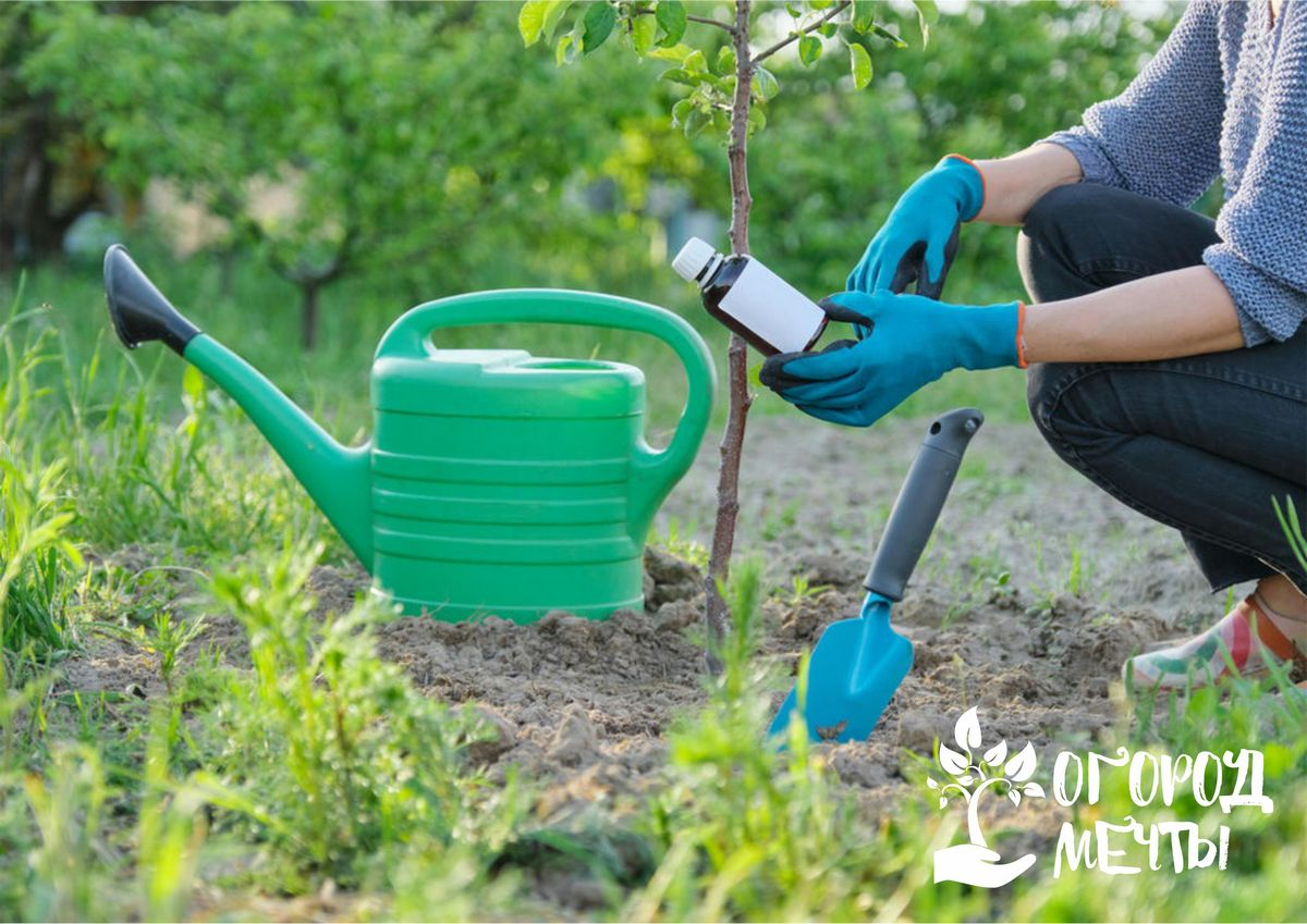 Питательная универсальная подкормка для сада, огорода и цветника: как применять гуматы на дачном участке