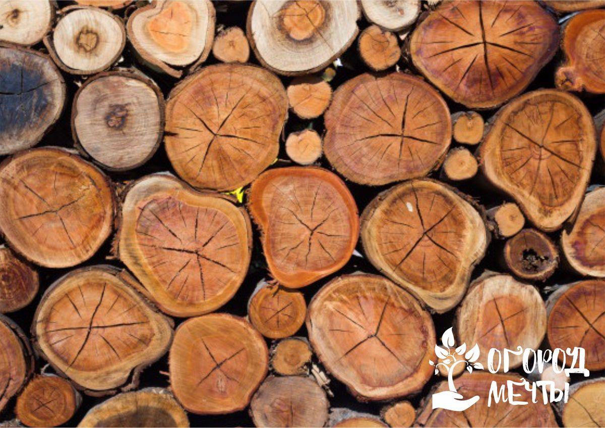Что можно сделать из древесных спилов