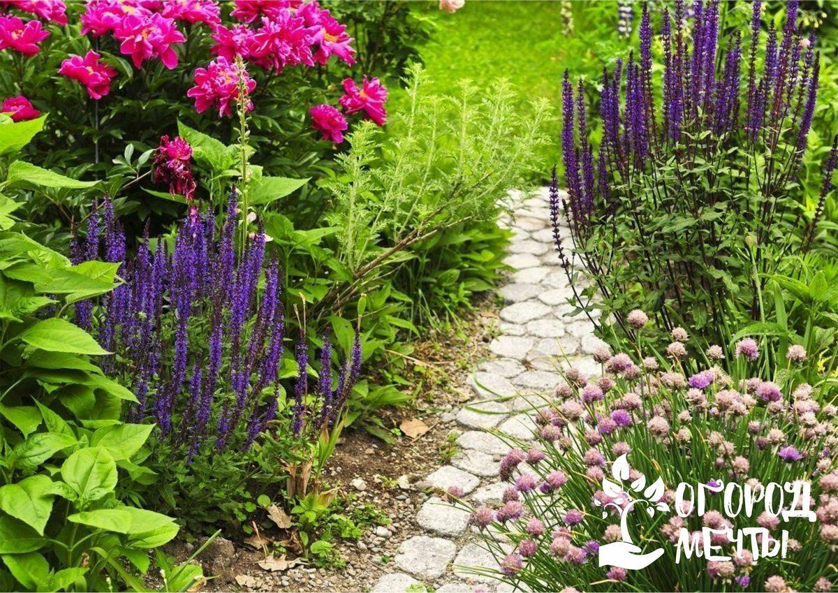 Сад в прованском стиле: отличительные черты и особенности оформления