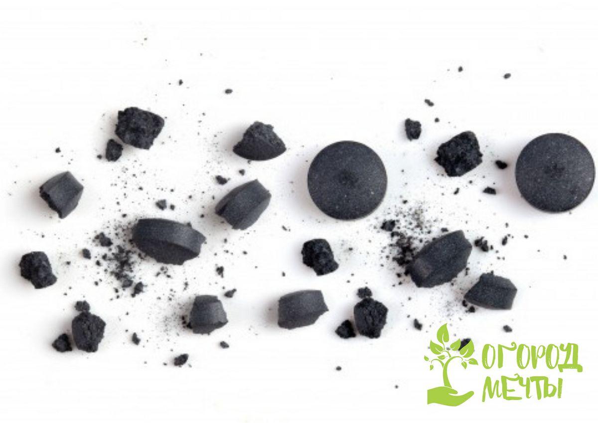 Восемь вариантов использования угольных таблеток в огороде, саду и цветнике