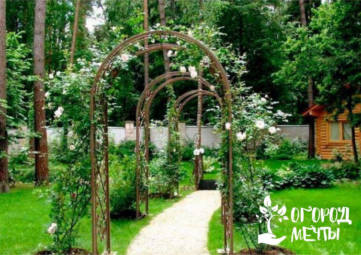 Где разместить садовую арку на даче: семь интересных вариантов