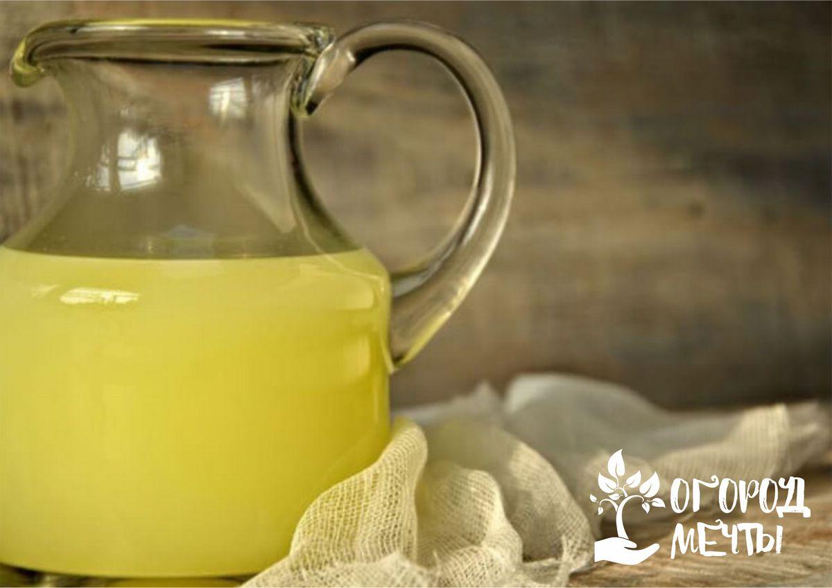 Молочная сыворотка: топ-5 вариантов применения на дачном участке