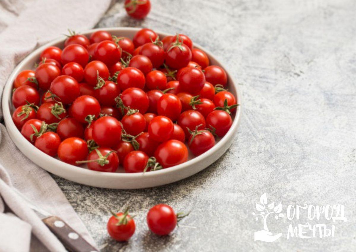 Самые сладкие и вкусные томаты черри: топ-14 лучших сортов для огорода