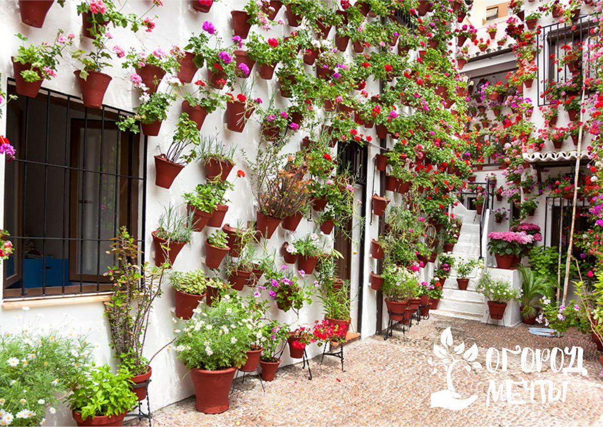 Основные черты каталонского стиля в оформлении сада