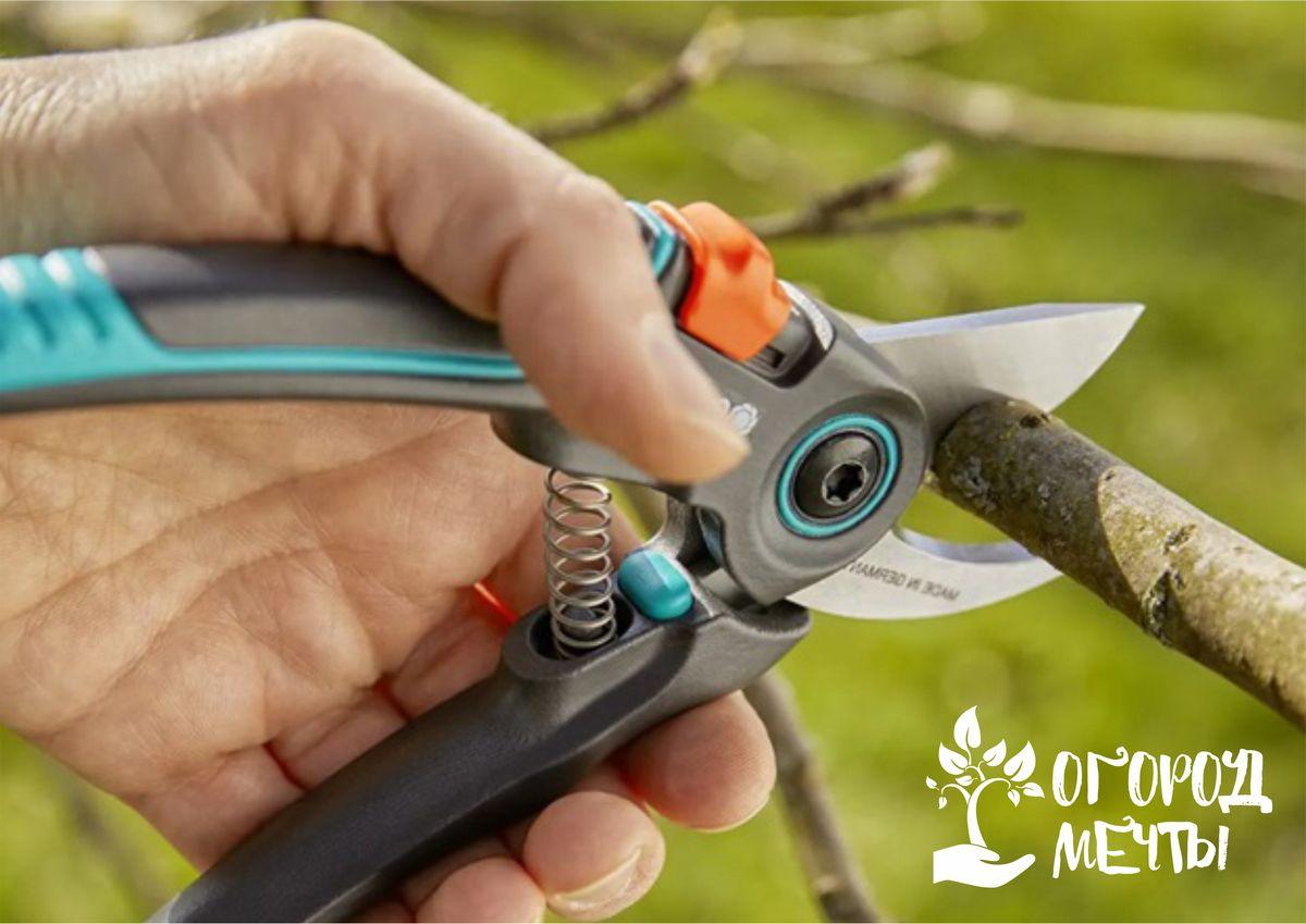 Как выбрать качественные инструменты для работ в саду