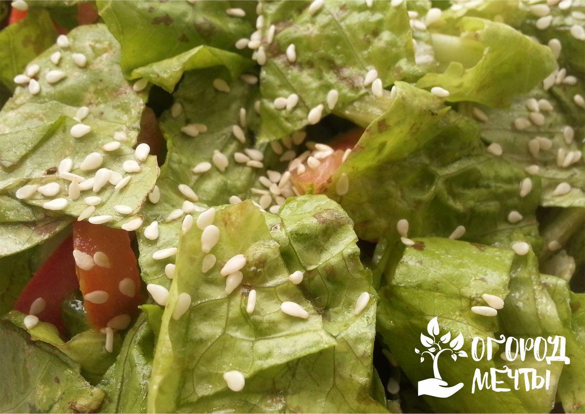 Как дольше сохранить свежесть салата?