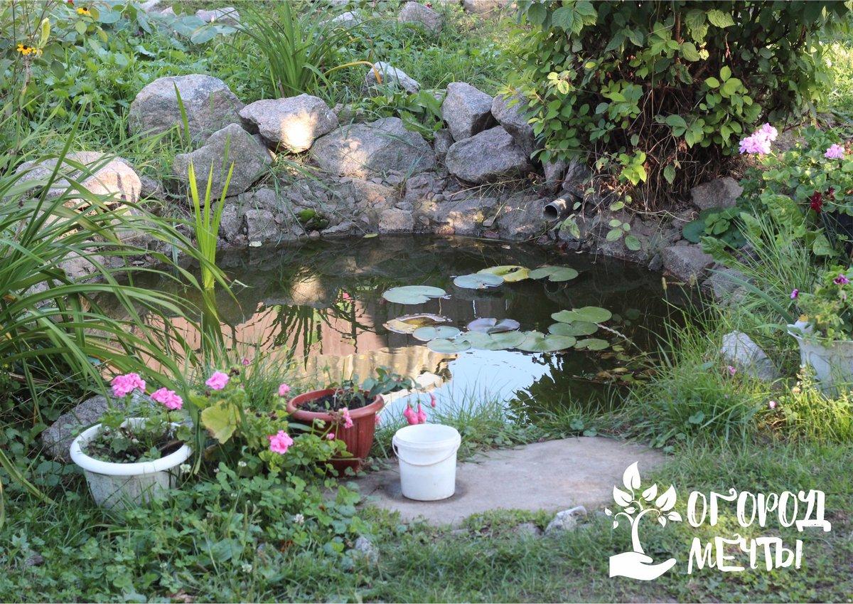 Как практично и красиво украсить пруд на даче? Используйте эти виды камня!