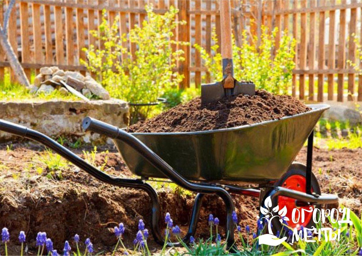 Чтобы сделать супер-удобрение для дачных растений, добавьте в компостную яму эти шесть компонентов!
