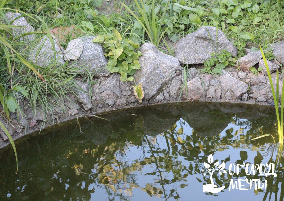 Почему камень - это лучший вариант украшения дачного пруда