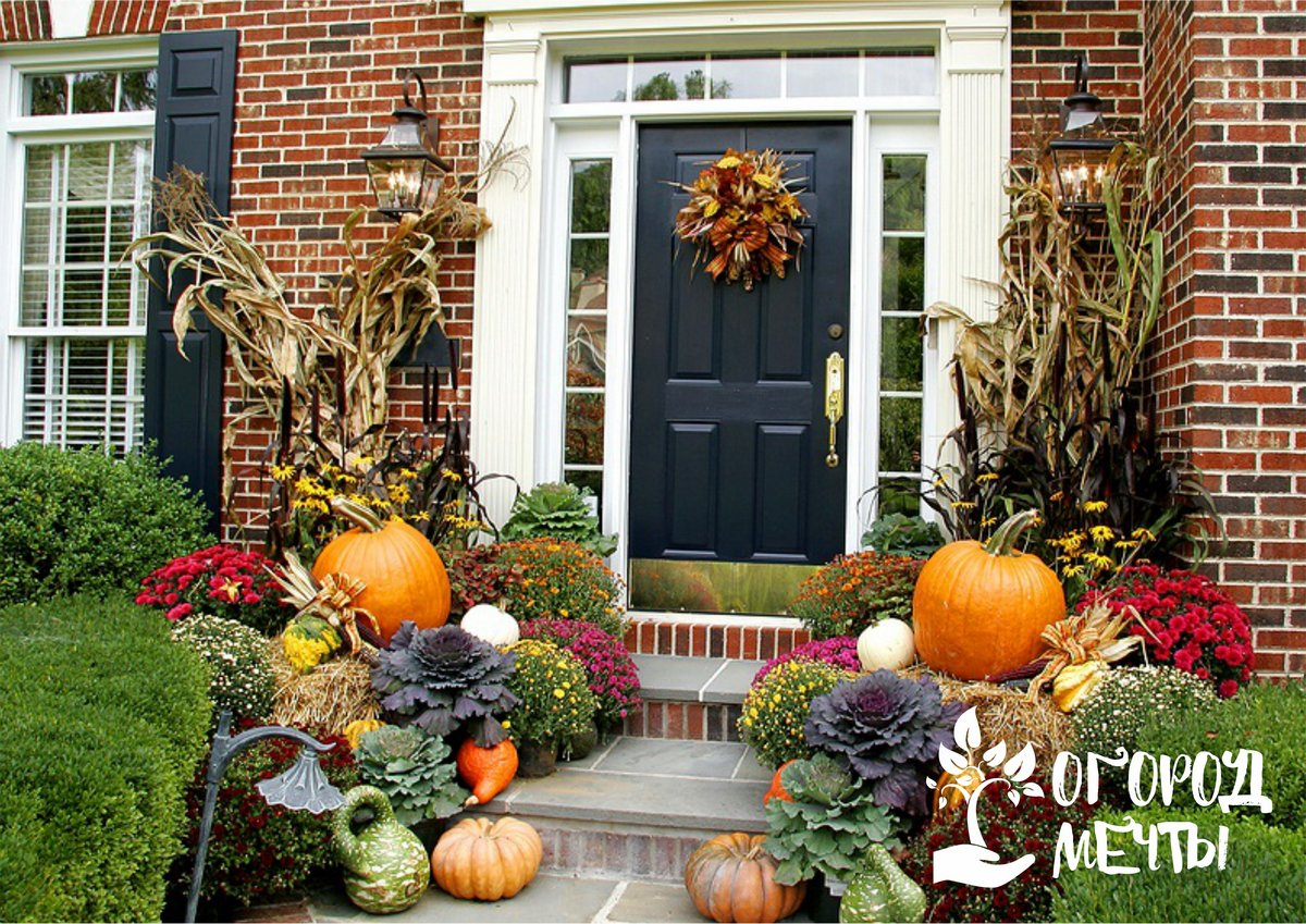 Красивая осенняя дача: как и чем украсить участок осенью на зависть всем соседям!